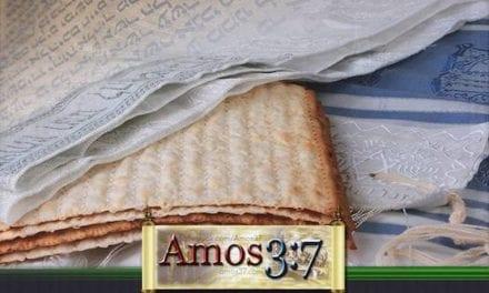 Holy Days: Unleavened Bread