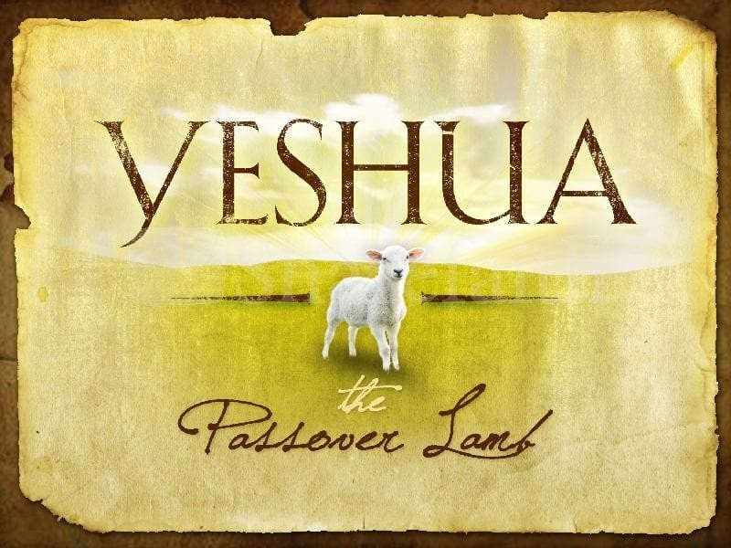 Passover,Video,Christian,Holy Days,Jewish,Feasts,Leviticus 23,