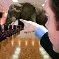 Reformed Covenant Amillenial, The Elephant in the Room