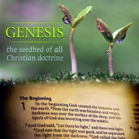 The First Verse Understanding Genesis