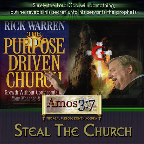 The Real Purpose Driven Agenda: Steal The Church
