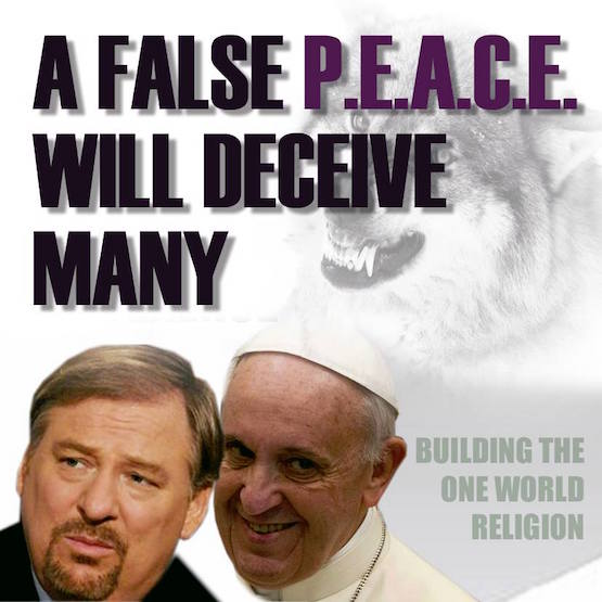 Rick Warren,Peace Plan,UN,goals,ecumenical pope,