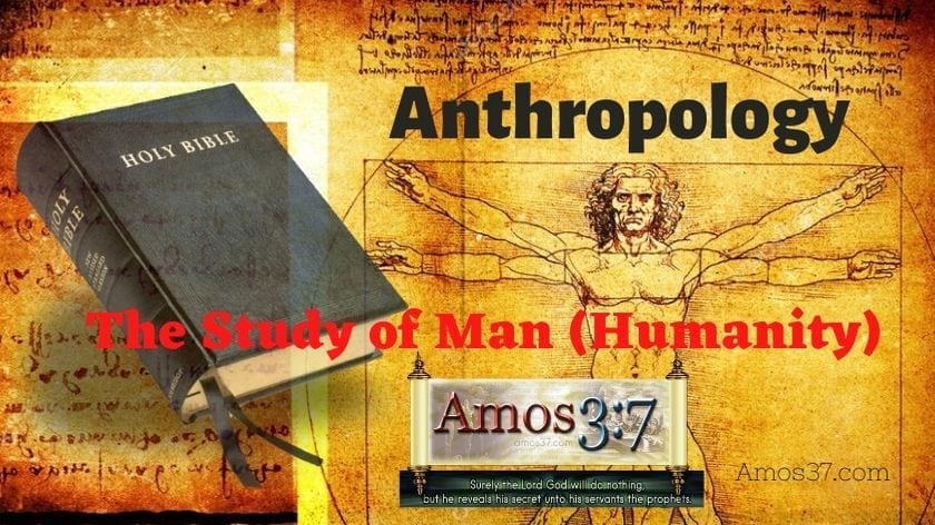 theology, anthropology, course, free,
